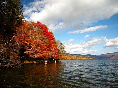 屈斜路湖の紅葉のピーク