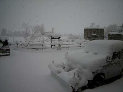 吹雪です(除雪前)