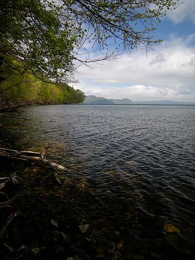 屈斜路湖でカヌー体験(1時間〜2時間までのプライベート・ツアー)。早朝5時スタートOK。ご希望により好きな時間に出発できます。