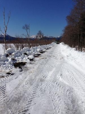 裏道の除雪