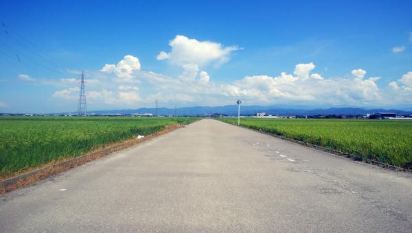 夏空へ続く一本道