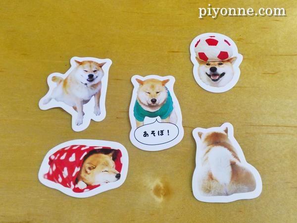 piyonne.com-shi-ru4.jpg