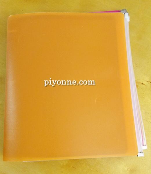 piyonne.com-case1.jpg