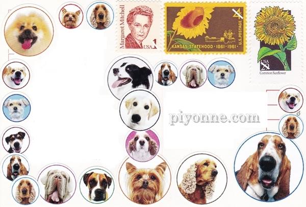 piyonne.com1.jpg