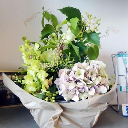 本院のお花