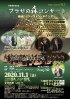 プラザの森コンサート 11月1日 チラシ