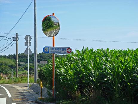小水浜への道