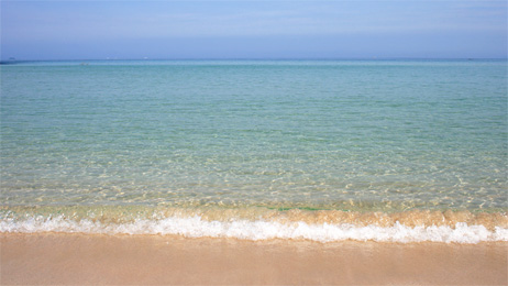 大浜の波打ち際