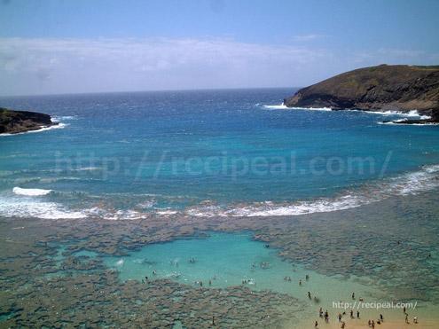 ハナウマベイ|ハワイ オアフ島
