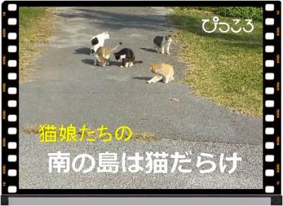 編集_DSCN5291.jpg