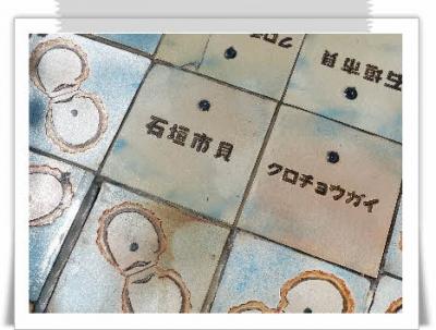 編集_P2330739.jpg