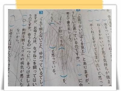 編集_DSCN7466.jpg