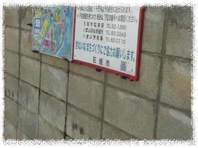 編集_P1600615.jpg