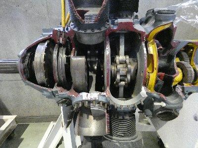 P1440302.jpg