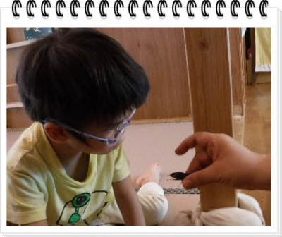 編集_DSCF7337.jpg