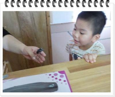 編集_DSCN4352.jpg