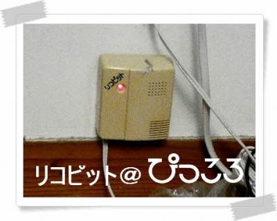 編集_P1690119.jpg