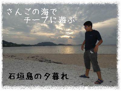 編集_P1690730.jpg