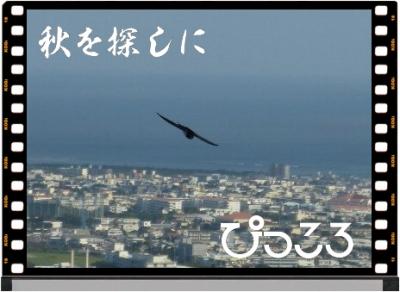 Photo Editor_P1640100.jpg