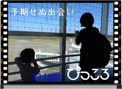 Photo Editor_P1640983.jpg