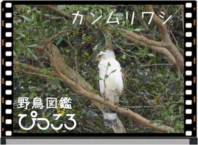 Photo Editor_DSCN7757.jpg