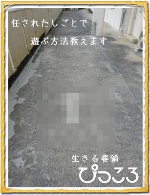 Photo Editor_P1660379.jpg