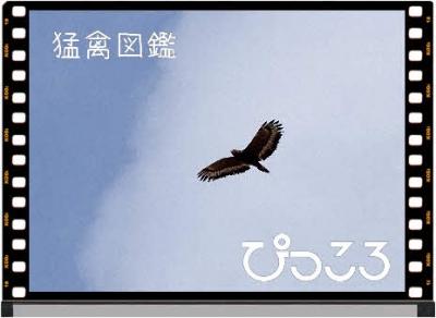 Photo Editor_DSC01750.jpg