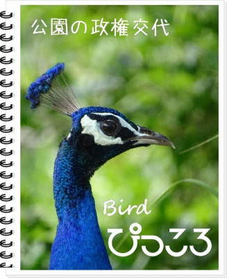 Photo Editor_DSC04566.jpg