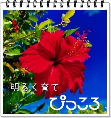 redIMG_0380waku.jpg