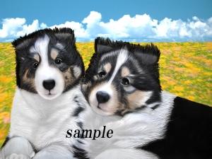DogSmile angei1