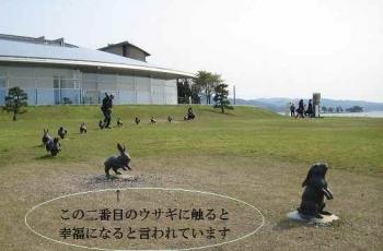 宍道湖のうさぎ