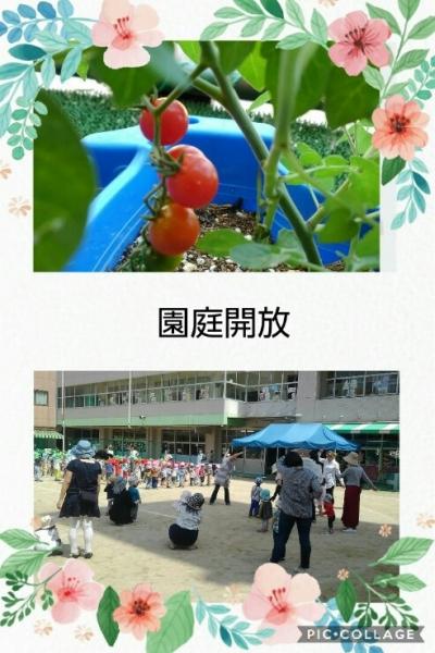 Collage 2018-05-16 02_46_26.jpg
