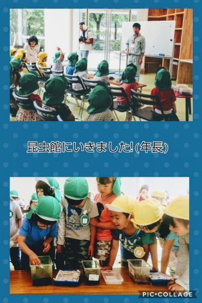 Collage 2018-05-31 22_35_28.jpg