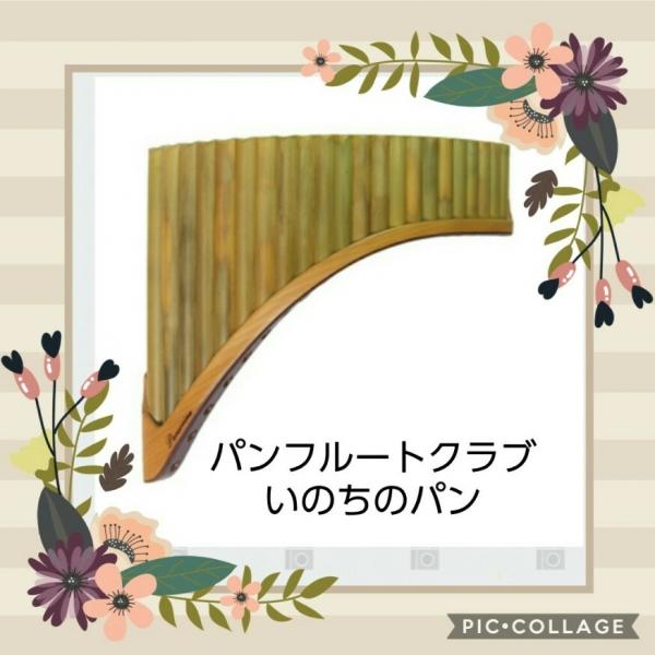 Collage 2018-06-17 03_57_53.jpg