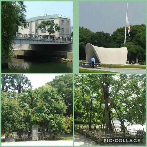 Collage 2018-07-21 01_33_48.jpg