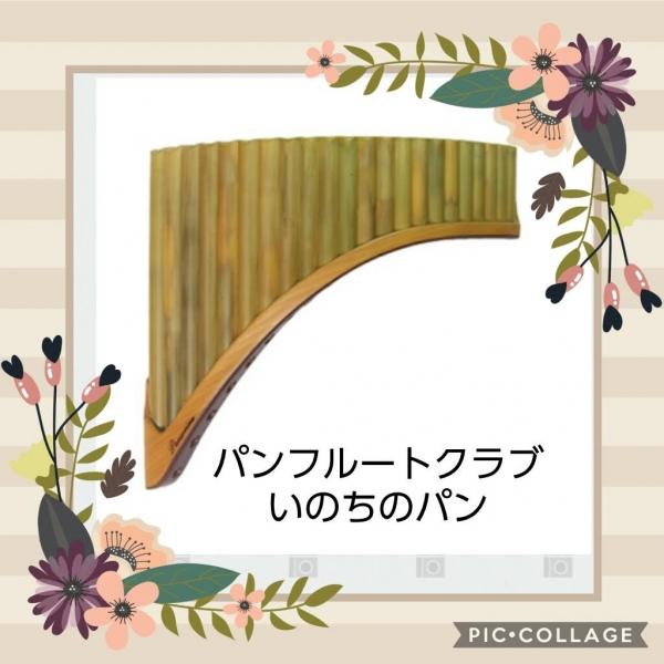 20190210_1552023.jpg