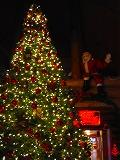 大滝 道の駅クリスマス