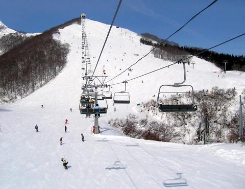 ぱら 場 いわっ スキー 岩原スキー場の名前の由来は