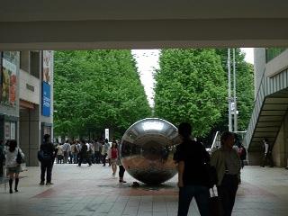 日本色彩学会全国大会に参加 椿のころ