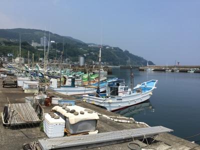 稲取漁港 漁船