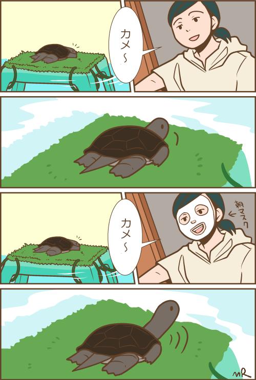 カメマンガ