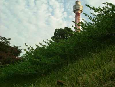 061015_山下公園4
