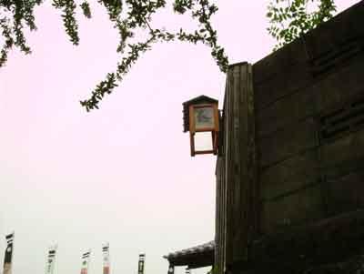 070601_花菖蒲祭り7