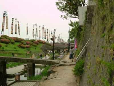 070601_花菖蒲祭り10