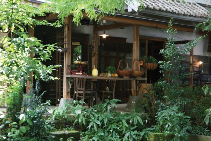 081118_森のレストラン3