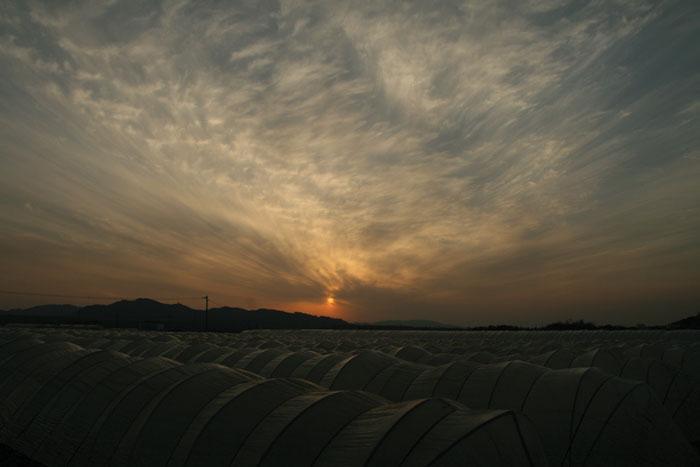 090218_泗水の夕焼け