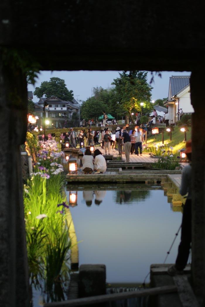 090605_花菖蒲祭り8