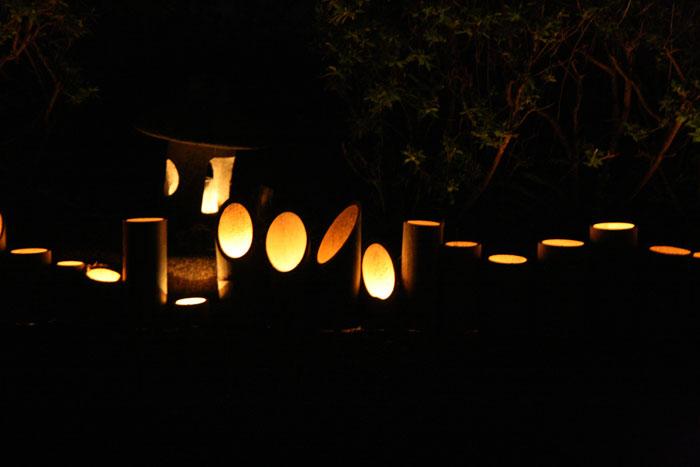 101015_高鍋灯籠祭り03