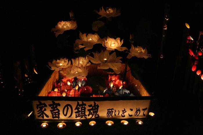 101015_高鍋灯籠祭り05