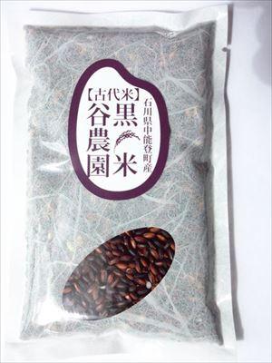 古代米ー黒米2